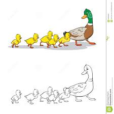 coloring book mother duck and ducklings stock vector image
