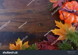 autumn fall background thanksgiving leaves stock photo