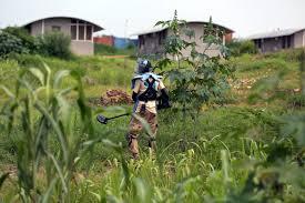 Radio Miraya Juba News Unmas Clearance Of Green Hill Primary Gudele Unmiss