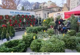 wreaths for sale christmas wreaths sale market in stock photos christmas wreaths