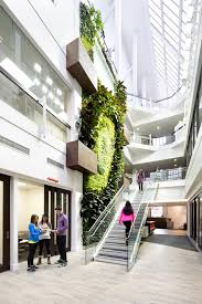 Offices by Green Walls A Cool Design Accent For Offices With Personality