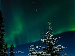 aurora borealis northern lights tours yukon aurora dancing over yukon canada nature tours yukon canada