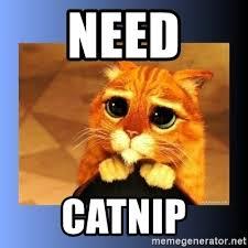 Puss In Boots Meme - need catnip puss in boots eyes 2 meme generator