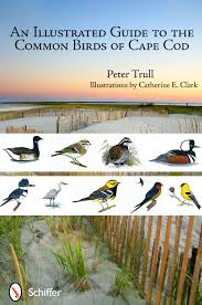 cape cod native plants an illustrated guide to the common birds of cape cod peter trull