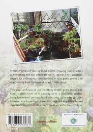 permaculture garden layout permaculture in pots how to grow food in small urban spaces