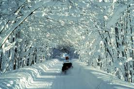 Michigan scenery images Why is snowmobiling in michigan the most popular winter activity jpg