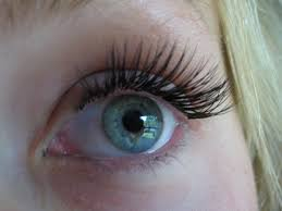 best extensions best places for eyelash extensions in minnesota wcco cbs minnesota