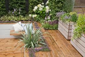 sunken deck landscaping and garden plant u0026 flower stock