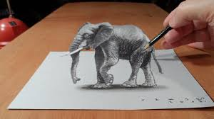 drawing 3d elephant how to draw 3d elephant on paper trick art