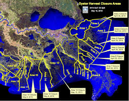 louisiana map areas in precautionary move dhh closes oyster harvesting area 13 due to