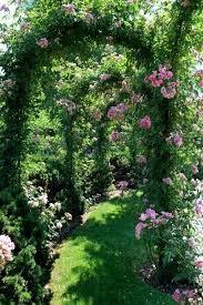 15 best flower gardens images on pinterest landscaping flowers