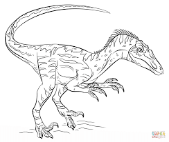elegant velociraptor coloring page 91 for your coloring pages for