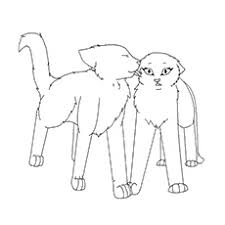 Cats Resume Warrior Cats Coloring Pages Shishita World Com