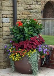 Container Gardening Ideas 1743 Best Container Gardening Ideas Images On Pinterest