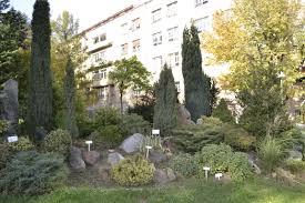 file sumarski f bg arboretum alpinetum jpg wikimedia commons