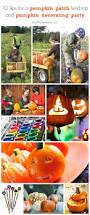 10 tips for a pumpkin patch field trip u0026 pumpkin decorating party