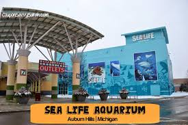 Michigan travel coupons images Coupon savvy sarah sea life michigan aquarium our sneak peek jpg