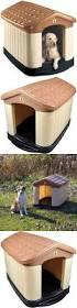 Extra Large Dog Igloo House Best 25 Extra Large Dog Crate Ideas Only On Pinterest Extra