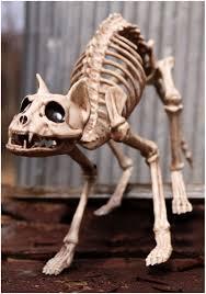 Halloween Ornaments Uk Skeleton Cat