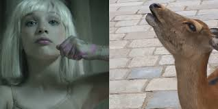 Sia Video Chandelier by Sia U0027s U0027chandelier U0027 Is The Perfect Soundtrack For That Weird