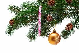 images christmas new year tree balls branches conifer cone holidays
