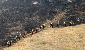 Wildfire Colorado News by Officials Fire Near Boulder Colorado May Be Human Caused