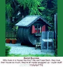 Rabbit Hutch For Multiple Rabbits Rabbit House Living U0026 Sleeping