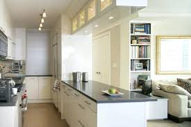 apartment galley kitchen ideas galley kitchen ideas ikea cityofhope co