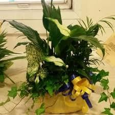 florist nashville tn hody s florist florists 3515 w hamilton rd nashville tn