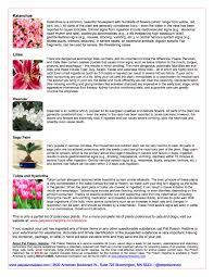 15 native plants important to florida u0027s history phillip u0027s 100 list of complete flowers cruzito brugmansia cultivar