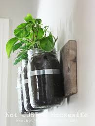 Garden Wall Planter by Mason Jar Wall Planter Stacy Risenmay