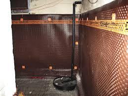 tiger in the basement shower in basement concrete floor in