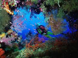 Where Is Bora Bora Located On The World Map by Tahiti Vacations Bora Bora French Polynesia South Pacific