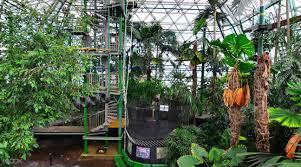 Cairns Botanical Garden by Cairns Zoom U0026 Wildlife Dome Ticket Cairns Australia Klook