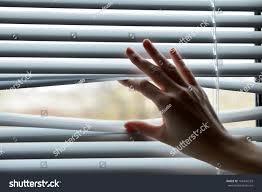 female hand separating slats venetian blinds stock photo 164344553