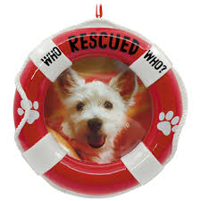 pet adoption picture frame hallmark ornament gift ornaments
