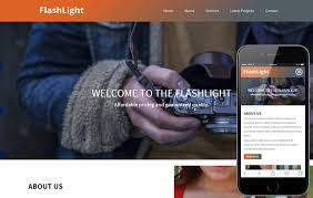 flash website template free photographer w3layouts com
