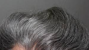 images of sallt and pepper hair 5 things women want men to know about going gray men s fitness