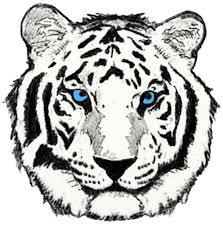 tiger designs year of the tiger inked