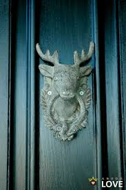 493 best antlers images on pinterest decorating with deer