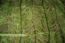 Green Velvet Upholstery Fabric Peacock Plume Luxurious Cut Velvet Citrus Green Heavy Velvet