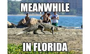 Florida Rain Meme - 30 florida memes that need to be retired