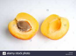 apricot fruit food isolated healthy eating organic color image