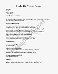 System Analyst Sample Resume Resume Program Analyst Resume