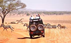 hatari jeep tansania familien quality time deluxe serengeti u0026 privatinsel