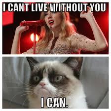 To Kill A Mockingbird Cat Meme - grumpy cat meme taylor swift google search pinteres