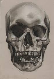skull drawing med contrast study