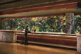 The Mirage Buffet Price by Mirage Hotel Las Vegas Nv Booking Com