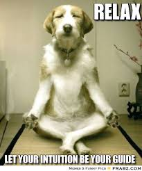 Relax Meme - need to talk check out iprevail health relax pinterest