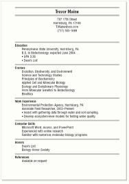 Free Resume Templates For Teens Resume Examples For College Students Resume Example And Free